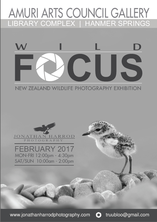 Jonathan Harrod: Wildlife Photography Exhibition