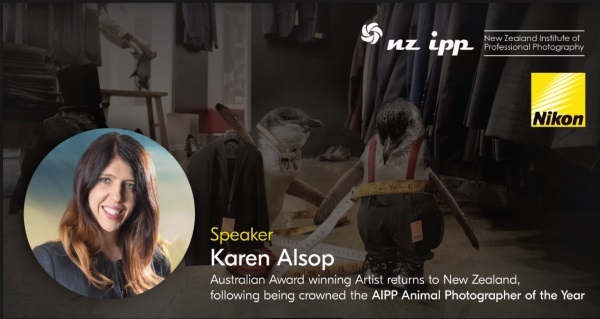 Telling Wild Stories – Karen Alsop